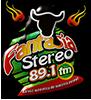 Fantasia Stereo - Belén, Nariño